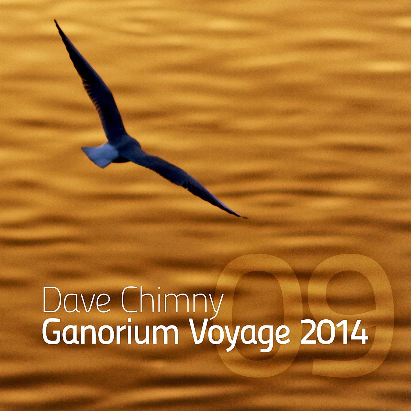 Dave Chimny – Ganorium Voyage 2014-09