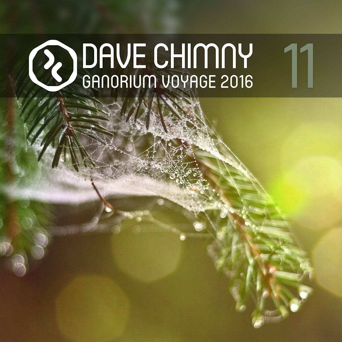 Dave Chimny – Ganorium Voyage 2016-11