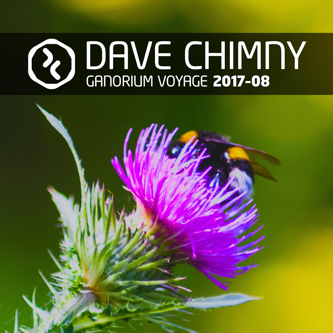 Dave Chimny – Ganorium Voyage 2017-08